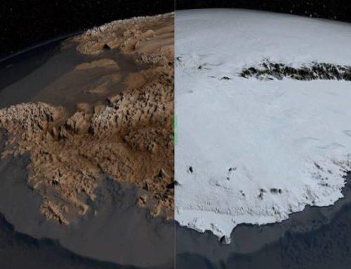 La impactante y triste imagen de la Antártica sin nieve con temperaturas récord de 18,3°c