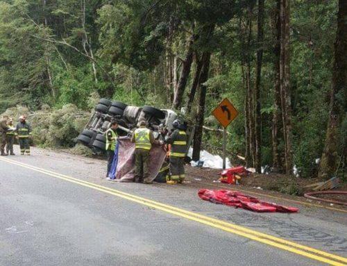 Padre , madre y su hijo de tres años mueren en accidente en el sur de Chile