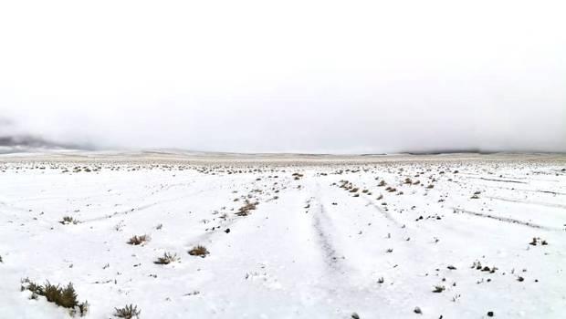 Noticias Chile   El desierto más arido del mundo se cubrió de nieve