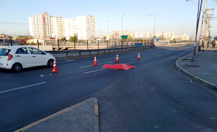 Noticias Chile | Delincuente trato de asaltar camión, pero perdió el equilibrio y murió atropellado