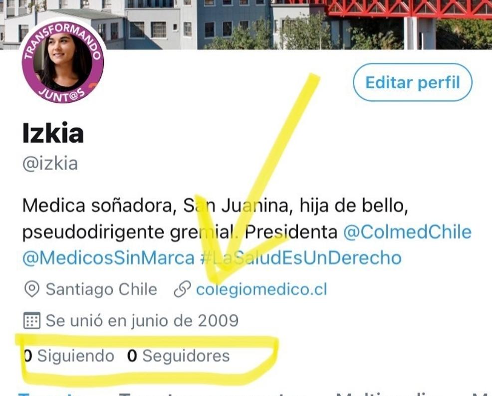 Noticias Chile   Bloquean cuenta de Izkia Siches en Twitter, por supuesto ataque bot