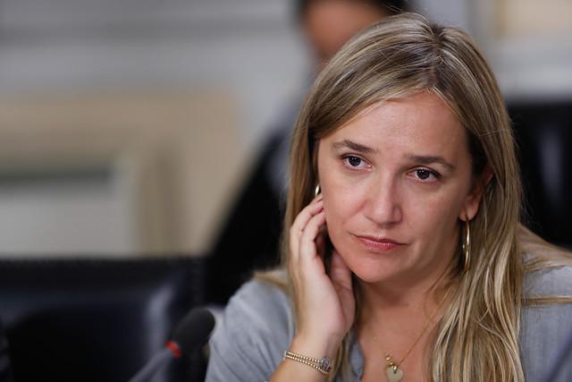 Noticias Chile | Funan a diputada María José Hoffman, le dijeron que su hijo es un violador