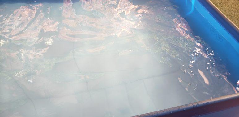 Noticias Chile | Tragedia de año nuevo: Menor tres años muere ahogado en piscina