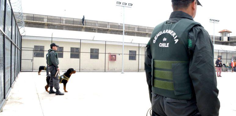 Noticias Chile | Brote de covid-19 afecta a penal de Curicó, con 118 reos contagiados