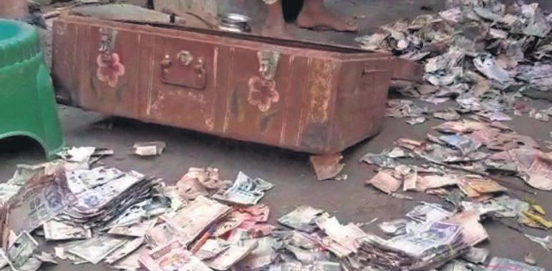 Hombre perdió todos los ahorros para su vivienda debido a que termitas se comieron el efectivo que guardó en una caja