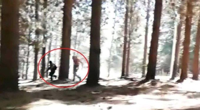 Noticias Chile | Dos carabineros heridos a bala deja enfrentamiento terroristas de la CAM en Cholchol